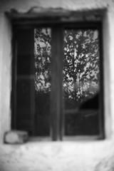 Reflections from the past (Mi-Fo-to) Tags: summer italy white mountain black abandoned del italia village estate ghost atmosphere valle alta sole mis montagna bianco atmosfera nero gena fantasma dolomites dolomiti monti altri tempi paese mifoto abbandonato rurale fantasmi rurar dsc02098