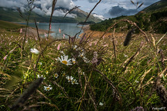 Lago di Moncenisio (Fabius811) Tags: travel colori people arte artoftheday france moncenisio landscape lonelyplanet beauty mountain paesaggi cloud nuvole