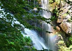 dardagna16 037f (dibattista) Tags: emilia romagna dardagna cascate falls water acqua natura neture