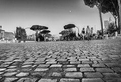 The Road to Colosseum (Maurizio Imbriale) Tags: bw blackwhite collectingsouls creativecommons decisivemoment explore faces flickr flickriver italy maurizioimbriale moments monochrome nikond3200 portrait rome scenephotography worldstreetphotography candidpeople portraitstreet