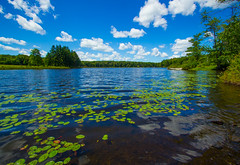 Summer Afternoon On Trojan Lake  *Explore* (Catskills Photography) Tags: lake sky clouds landscape lilypads water reflections canon1022mmlens wideangle
