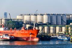Vopak plant and storage in the port of Rotterdam (jbdodane) Tags: netherlands port harbor rotterdam europe ship vessel terminal cargo maritime tanks vlaardingen vopak nieuwemaas alamy scheur alamy150510 macsday21