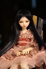 IMG_8256 (Emma Wolf) Tags: doll bjd customblythe obitsucustom classydoll dimdolllarina mystickids zinnadollmore