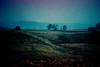 (Jens_E) Tags: analog rainy 35mmfilm xprocessing minoltamaxxum olofstorp