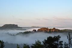 Im Nebelmeer (Sandsteiner) Tags: nebel frhling lilienstein elbsandsteingebirge sandsteiner