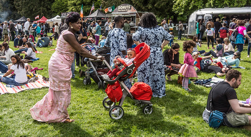 I HAD A WONDERFUL DAY AT AFRICA DAY 2015 [FARMLEIGH HOUSE IN PHOENIX PARK]-104515