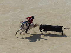 Pablo Hermoso de Mendoza, Corrida du 24/05/2015, Féria de Nîmes 2015, Nîmes, Gard, Languedoc-Roussillon (Marc Péquignot) Tags: corrida gard nîmes languedocroussillon rejoneador pablohermosodemendoza fériadenîmes2015