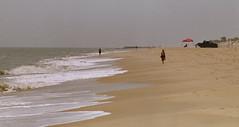 beach / nikon f100 / agfa 200 / shell gathering (bluebird87) Tags: beach nikon women f100 200 cape epson delaware v600 agfa henlopen c41 dx0