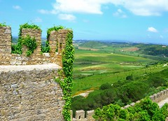 on the wall (ekelly80) Tags: portugal leiria june2016 summer bidos romancity walls citywalls townwalls fort fortification stone vines green view scenery fields