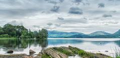 Across the lake (@stegreener) Tags: derwent derwentside lake lakedistrict lakes landscape water duck mountains pentax pentaxk3 ricoh derwentwater keswick