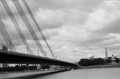 001566650029 (putjka) Tags: kiev4 analog film filmphotography kodak tmax100 bw retro vansu tilts