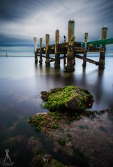 WATCHING OVER (Vaughan Laws Photography | www.lawsphotography.com) Tags: ocean longexposure sky seascape seaweed bird water canon landscape pier rocks outdoor jetty fineart melbourne le oldjetty ndfilter daytimelongexposure neutraldensityfilter longshutterexposure canon6d longexposurecolour nd10stop melbournelongexposure longexposurefineart lawsphotography vaughanlaws vaughanlawsphotography