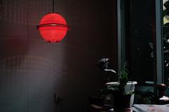 Bajo un Sol Rojo (GuilleDes) Tags: planta bar fotolog lmpara desenfocado