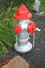 hydrant (brown_theo) Tags: gray silver red scarlet gahanna ohio fire hydrant new paint painted corner mulch sidewalk