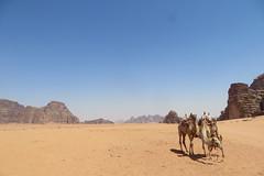 Wadi Rum (Martijn Booister) Tags: jordan wadirum desert