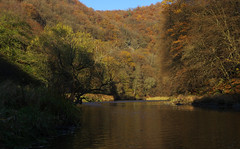 Sunny afternoon on Dyje river (Gregor  Samsa) Tags: czech czechrepublic eskrepublika ceskarepublika esko cesko czechia czechland czechlands bohemia moravia podyj podyji nationalpark exploration adventure dyje thaya river sail sailing row rowing boat boating journey autumn fall october tree trees woods forest light afternoon