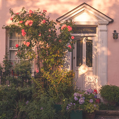 River Cottage (paulapics2) Tags: cottage rivercottage quaint pink flowers roses hydrangeas canoneos5diii canonef2470mm eveninglight