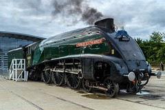 Union of South Africa. (Echo Charlie Three Zero) Tags: nrmshildon steamengines steam locomotives nikond600 60009 unionofsouthafrica shildonshedbash