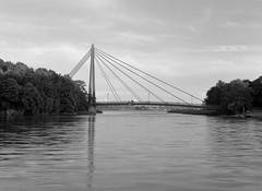 Bridge (markorsr) Tags: 150 acros100 fujifilm m645 mamiyam645 rodinal bridge water