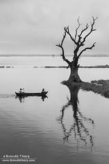 BT_20131026-9491 (brendatharp) Tags: travel water river asian boat fishing asia burma culture destination myanmar southeast burmese irrawaddy