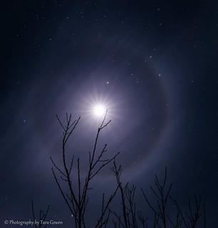 Moon Halo!