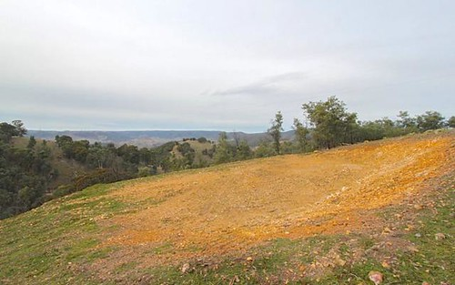 740 Red Hill Road, Paling Yards NSW
