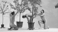 MAKING LOVE TO TREES - POS NEOLITHIC RITUAL (Honevo) Tags: dance danza ritual huggingtrees mobiletrees makinglovetotrees posneolithic arbolesmoviles