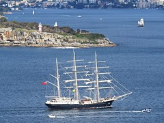 IMG_7900 Tenacious Passing South Head. (Boat bloke) Tags: sydney aystralia sydneyharbour harbor tallship tenacious ship boat tug yacht coast waterfront ferry canon sx50hs blue water city skyline square rigger rigged squarerigger