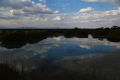 Beautiful view (crafty1tutu (Ann)) Tags: travel sky cloud holiday clouds landscape southafrica scenery 2016 anncameron warmbaths belabela naturethroughthelens canon5dmkiii canon24105lserieslens crafty1tutu anaturecanvas dithologamelodge