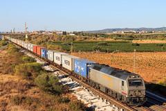 TECO en Bellvei (BCN06) Tags: rosco prima alstom containers teco maersk azuqueca cantunis continentalrail alstomprima 333319