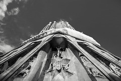 Looking Up at Sagrada Familia (BoXed_FisH) Tags: barcelona travel blackandwhite bw white black church monochrome architecture grey mono spain sony religion wideangle monotone unesco espana gaudi catalunya es sagradafamilia archtitecture antonigaudi placesofinterest sonyalpha sonyzeiss zeiss1635 sonya7 sel1635z sony1635mmvariotessartfef4zaoss sonyzeiss1635f4oss