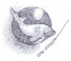 pez en puntillismo (ivanutrera) Tags: draw dibujo drawing dibujoenboligrafo dibujoalapicero drawballpointpen animal fish pez lapicero sea boligrafo