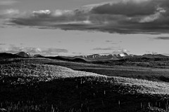 Northern Extend of Miner's Range - B&W (MIKOFOX  Show Your EXIF!) Tags: summer blackandwhite bw snow canada mountains monochrome june clouds landscape shadows hills yukon spruce firezone burnarea xt1 foxlakeburn foxlakefire fujifilmxt1 xf18135mmf3556rlmoiswr mikofox