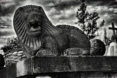 graveyard lion (Pejasar) Tags: sanlazarocemetery privatecemeteryexpansion lion cement statue guard bw gloom dark sky antigua guatemala