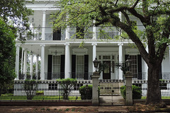 New Orleans - House Under The Tree (Drriss & Marrionn) Tags: neworleans neworleansla neworleanscitytrip outdoor gardendistrict architecture streetviews streetscene street building buildings balcony balconies colonnade