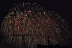 Lighting Up The Night Sky ...with Full Blown RainTree (jANgsg) Tags: singapore night nightsky fireworks display ndp2016 preview 2
