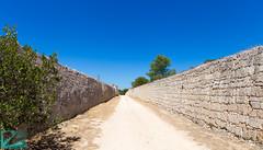 Pianosa 16778 (Roberto Miliani / Ginepro) Tags: isola hiking trekking walking elbe pianosa island ile camminare parconazionale arcipelagotoscano toscana tuscany toskana spring primavera