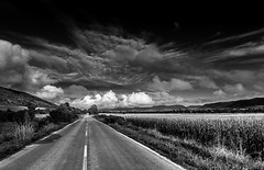 Travalling around () Tags: bw blackandwhite monochrome sky fields corn road travelling bulgaria valley clouds expolrebulgaria       agriculture    landscape