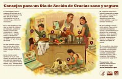 Thanksgiving Food Safety - Spanish (USDA Food Safety) Tags: infographic foursteps foodsafety fsis clean separate cook chill thermometer thanksgiving turkey family gravy spanish espanol