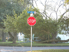 Stop Sign (West Beach Sunset) Tags: red tree art nature leaves canon powershot stop stopsign growing windshield texascity signpole outdoorphotography soneat horizontally sx600hs df267