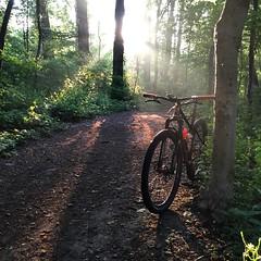 @lonewolfcycling always on patrol #dawnpatrol #weavercycleworks #custombicycles #steelisreal #singlespeed #29er