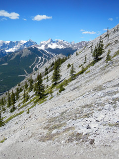 2015 May 23 - G8 Mountain Spring Hike - A steep descent
