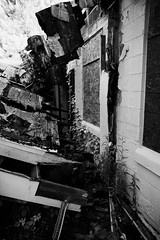 abandoned nursing home 15 (furrycelt) Tags: windows roof blackandwhite building abandoned monochrome wall nc vines nikon decay sigma northcarolina fallen collapsed fuquayvarina urbex 2015 d600 sigma24mmf18 lensblr photographersontumblr jianwilson sigma24mmf18exdgdfmacro nccentersformatureadultsinc