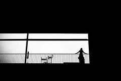 Transit (Solylock) Tags: 2016 paris streetphotography photoderue noiretblanc blackandwhite nb bw monochrome monochrom metropolitan metro affiche aeroport airport cdg roissy bus voitures cars escaliers stairs rflexion reflection ombre chinoise banc public fatigue marinire patissier sortie froissart propret bep
