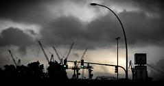 Hamburg Hafen Skyline (wiedenmann.markus) Tags: sunset urban clouds dawn trafficlight harbor harbour crane hamburg shade hh hafen kran ampel aftertherain hanse