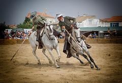 Fria du Cheval (marypink) Tags: camargue francia friaducheval cavalli horses chevaux esibizione spettacolo nikond5200 2470mmf28