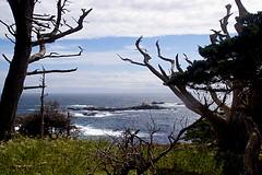 085-point lobos- (danvartanian) Tags: pointlobos california landscape nature