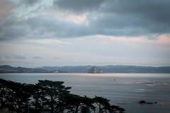 @IMG_4340 (bruce hull) Tags: sanfrancisco california aquarium coast highway chinatown pacific wharf whales coit emabacadero