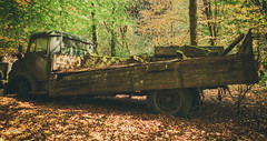 Heavy Decay (Martyn.Smith.) Tags: urbex decay abandoned rusty corroded lorry flatbed leaves forest tractionsud abandonedvehicles decaying rusted corrosion rust urbanexploration canon eso 450d flickr image photo
