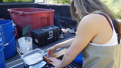 Measuring Salmon Smolt